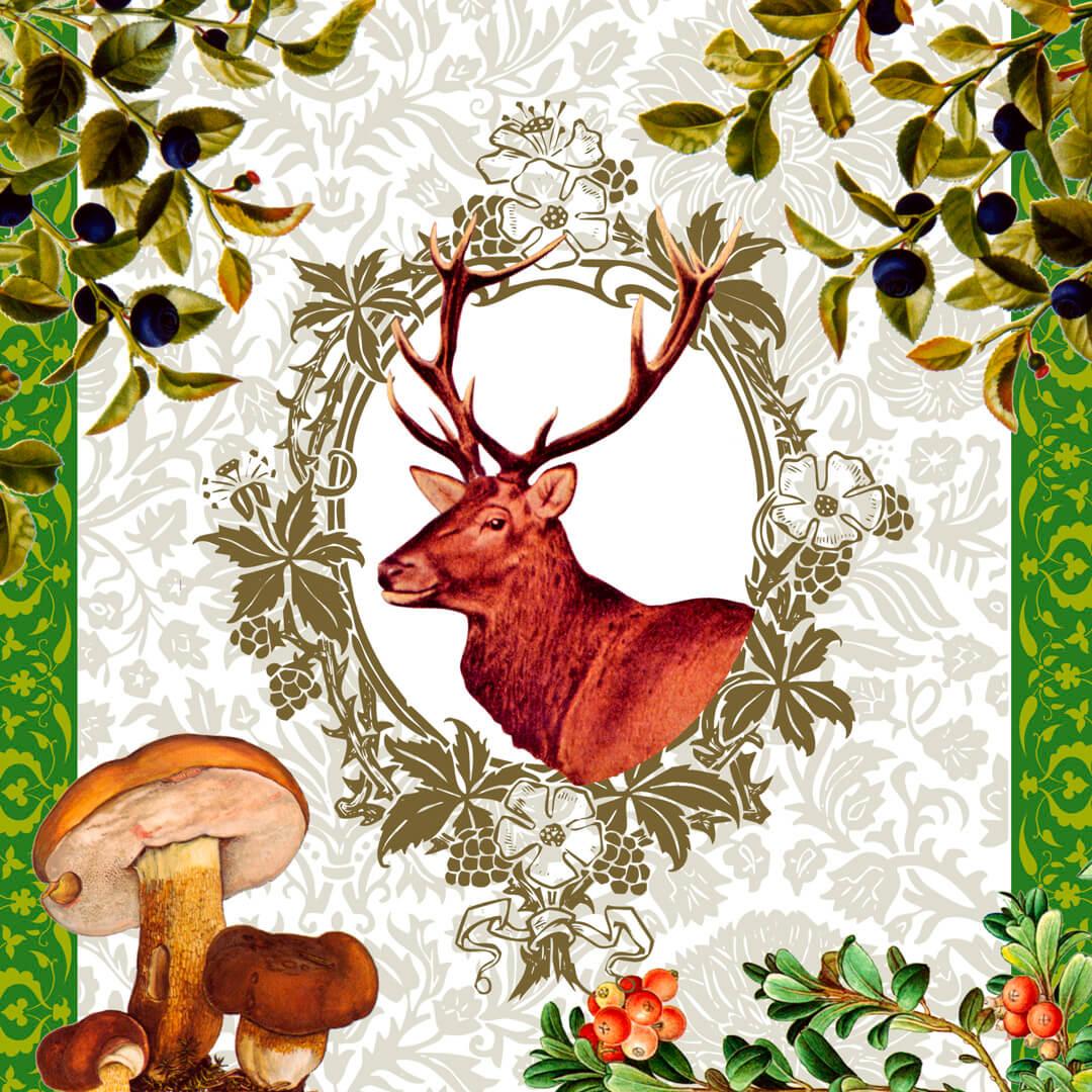 Deer-in-forest
