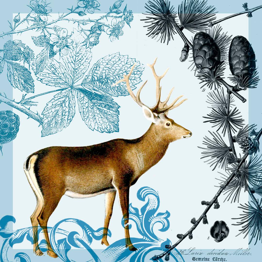 Herbst-m-Antilope-blau