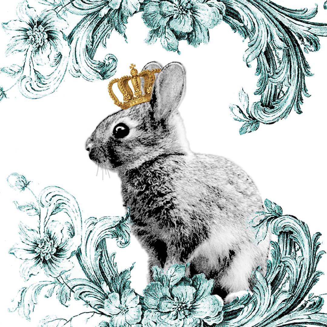 Rabbit-king-SW