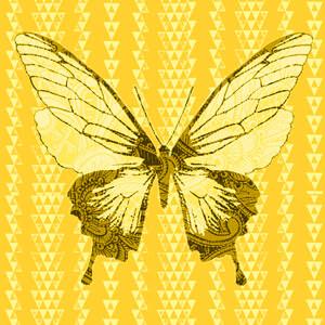 bb_Traum-fliegt-gold