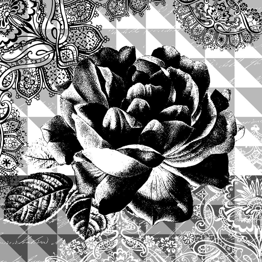 Pop-SW-Rose